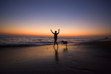 Silhouette of man and dog on beach at sunset