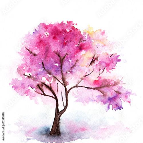 Fototapeta Single cherry sakura pink tree isolated