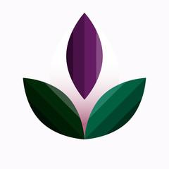 illustration of purple lotus petals