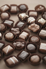 Close up of chocolate truffles