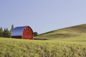 Barn among rolling fields, Palouse, Washington, United States