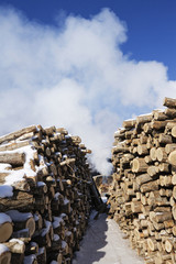 Stacks of Wood