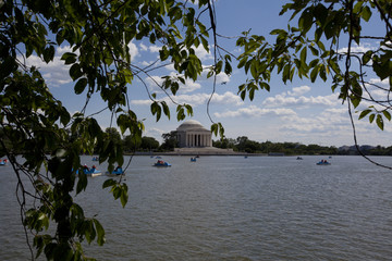 Tidal Pond by the Jefferson Memorial in Washington.  D.C. .