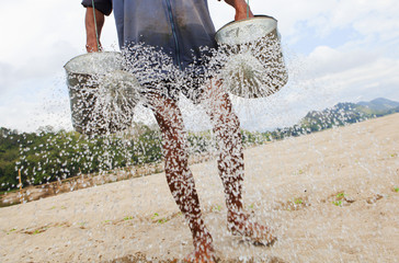 Farmer watering fields