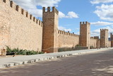 Walls in Montblanc, Tarragona,Catalonia, Spain