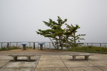 Cape Arago State Park on the Central Oregon Coastline