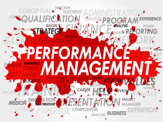 Word cloud of Performance Management related items