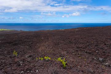 paysage chaotique du Grand Sud Sauvage, Réunion