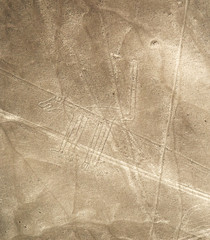 Unesco Heritage: Lines and Geoglyphs of Nazca, Peru - dog