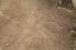 Lines and Geoglyphs of Nazca, Peru - Hummingbird - 82164004