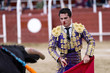 Постер, плакат: Matador in the bullring the bull fighting