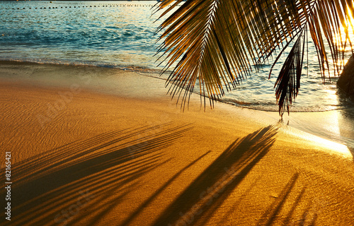 Poster Strand Beautiful sunset at Seychelles beach with palm tree shadow
