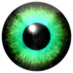 Detail of eye with light green colored iris and black pupil