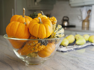Bowl of gourds and mini pumpkins on a kitchen counter in a modern fitted kitchen