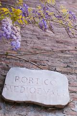 Blauregen im Forum Romanum, Rom