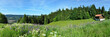 Leinwanddruck Bild - Panoramafoto Thüringer Wald