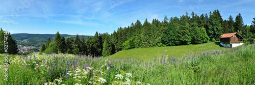 Leinwandbild Motiv Panoramafoto Thüringer Wald