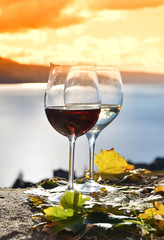 Two wineglasses and grapes on the terrace of vineyard in Lavaux