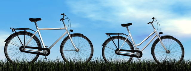 Male and female bicycles - 3D render