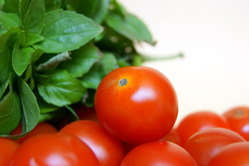 Basil with tomatoes