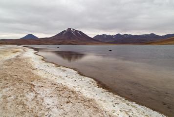 Laguna Miscanti - désert de Atacama