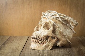 skull with rope still life on wood background