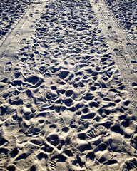 Tire Tracks and Footprints in the Sand