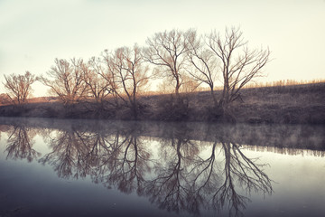 Trees are reflected in water early in morning in spring.