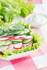 Salad with radish and cucumbers