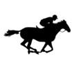 Horse. Derby - 82195089