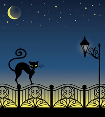 A black cat standing on a fence.