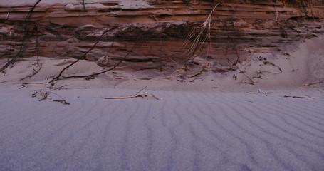 Beach dunes late Summer landscape, 4k