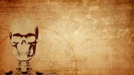 Ancient medicine background, skull