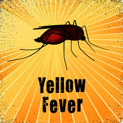 Yellow Fever, blood filled Mosquito, gold ray background