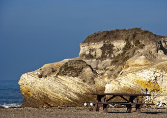 Large Rock and Picnic Area on Beach
