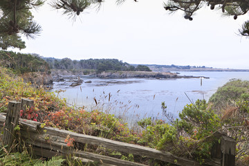 Viewpoint along the Mendocino Coast