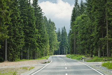 Road through forest, Bavaria, Germany, Europe