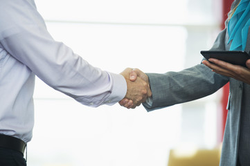 Caucasian business people shaking hands