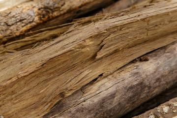 Cracks of wood closeup detail