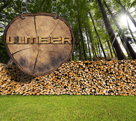 Firewood in the Woods and Lumber Sign