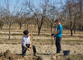 Grandfather and grandson planting a tree together