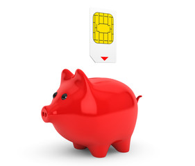 Sim Card Putting into Piggy Bank