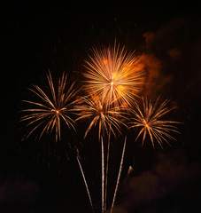beautiful fireworks over sky