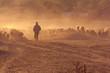 Leinwandbild Motiv Shepherd with flock of sheep at sunset