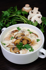 creamy soup pureed mushrooms and chicken