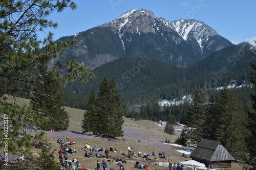 Turyści w dolinie - 82232209