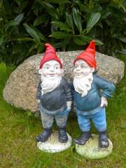Funny garden gnomes - Bild -