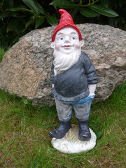 Garden gnome - Bild -