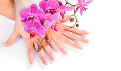 manicure and orchid on white - wellness and care