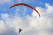 paraglider - 82236857